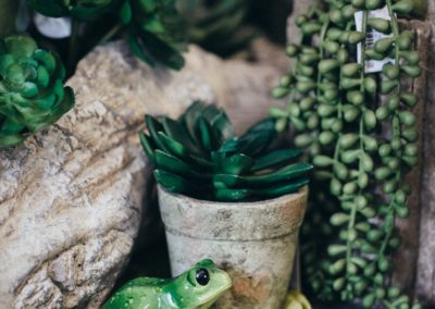 Kunstpflanze in Blumentopf und Frosch Figur aus Keramik