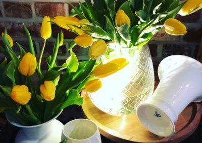 Tulpen in Glasvasen und Keramikvasen