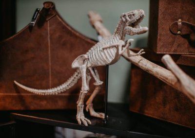 Dinosaurier Skelett Skulptur
