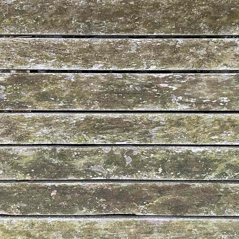 Nahaufnahme von unbehandeltem Holz mit grüner Patina